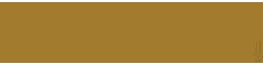 Discover Halong logo