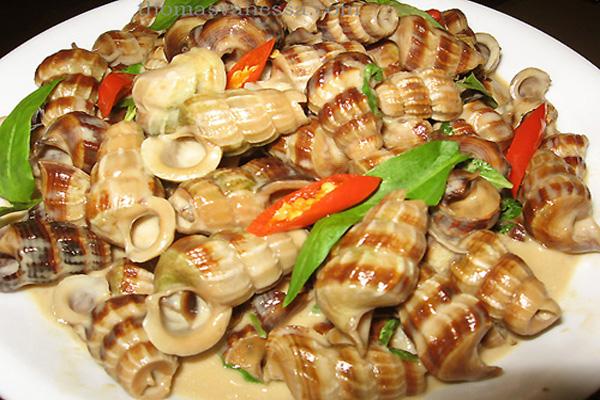 sea-snails